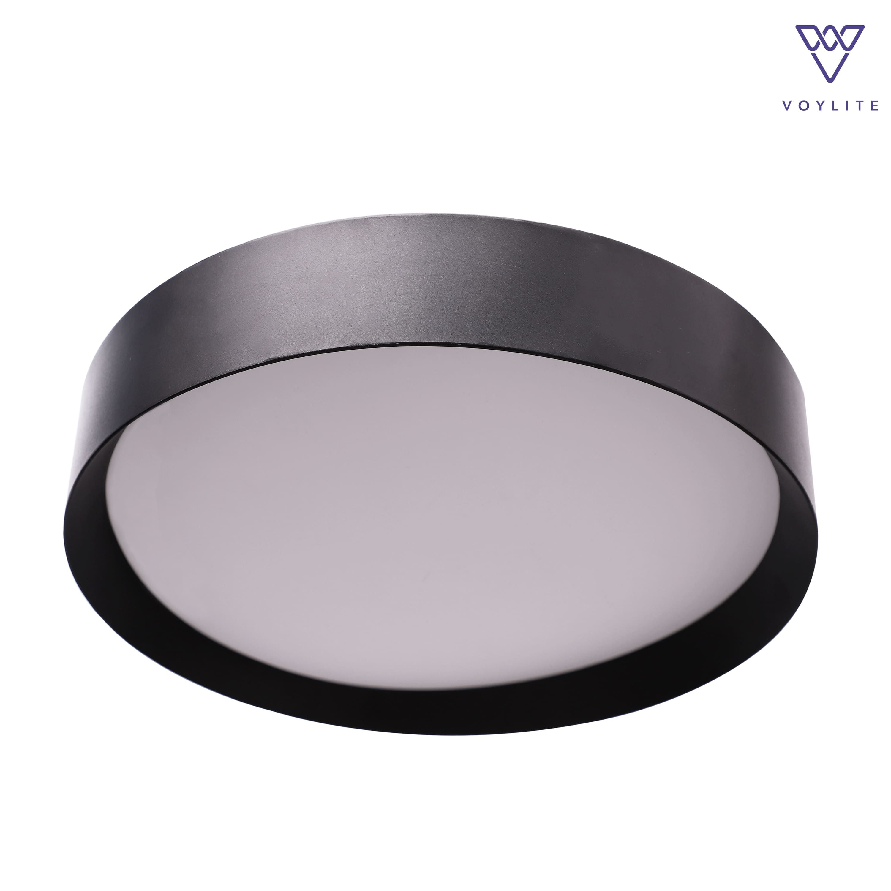 Boru Black Ceiling Light