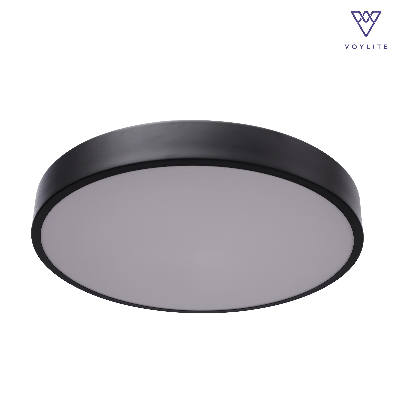 Bien Black Ceiling Light